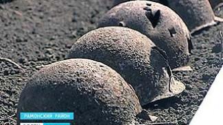 Останки бойцов Красной Армии перезахоронили в Чистой поляне Рамонского района