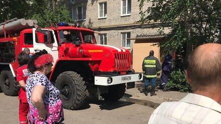 В Воронеже при пожаре в квартире погиб инвалид с собакой