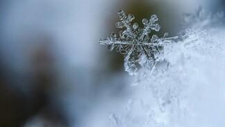 Новая неделя встретит воронежцев снегом