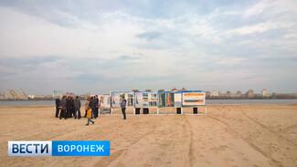 Для разработки концепции Петровской набережной в Воронеже объявят международный конкурс