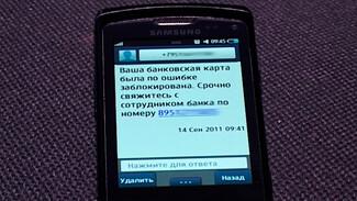 Воронежцы за неделю отдали мошенникам около 6 млн рублей