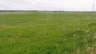 Под Воронежем чиновница, отдавшая землю за 13 млн в частные руки, избежала наказания