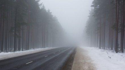 Синоптики: в Воронежской области вновь ожидается опасный туман