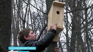 В День Птиц пернатым дали жильё - ученики сельской школы смастерили скворечники