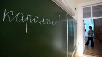 В воронежской школе на карантин закрыли пять первых классов