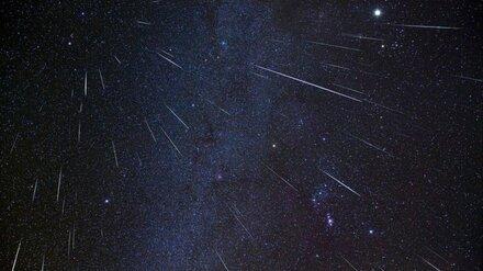 Воронежцы смогут увидеть самый яркий звездопад года