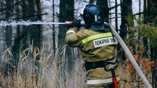 После уничтожившего жилые дома пожара в районе Воронежской области ввели режим ЧС