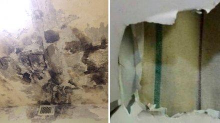 «Стены утеплили матрасами». Пациентка пожаловалась на ремонт в больнице под Воронежем