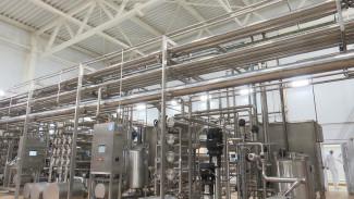 В Воронежской области открыли уникальный завод по переработке молочной сыворотки