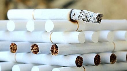 В Воронежскую область завезли 40 тонн нелегальных сигарет под видом томатной пасты