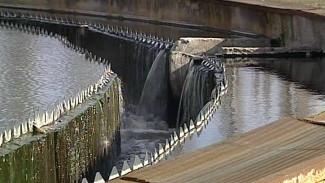 ЛОС о ситуации с запахом фекалий в Воронеже: «Стоки водоканала доочистить невозможно»