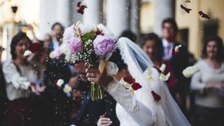 Жители Воронежской области сыграют 300 свадеб в канун Дня семьи, любви и верности