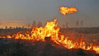 В микрорайоне Воронежа неизвестные устроили крупный пожар: появилось видео