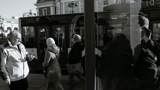 В Воронеже на три дня закрыли популярный троллейбусный маршрут