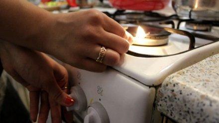 Жители 16 населённых пунктов в Воронежской области остались без газа из-за аварии
