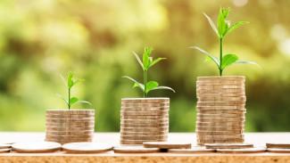 Воронежцам предсказали рост зарплат в 2020 году