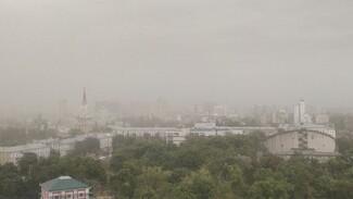 Воронеж накрыла песчаная буря: появились фото и видео