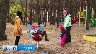В 2018 году в Воронеже благоустроят более 20 общественных территорий