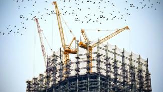На месте воронежского «Птичьего рынка» до конца 2020 года построят торговый комплекс