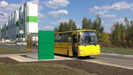 Воронежский микрорайон «Озерки» получил обещанные мэрией дополнительные маршруты