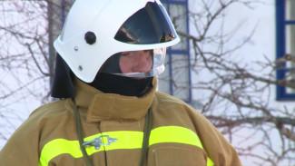 Двойная служба. Окрестности воронежского Дивногорья от пожаров спасут монахи