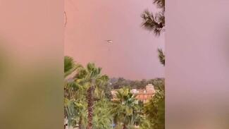 Туристы из Воронежа поделились фото и видео из охваченной огнём Турции
