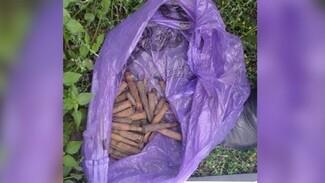 Воронежец незаконно хранил взрывчатку из боеприпасов времён Второй мировой войны