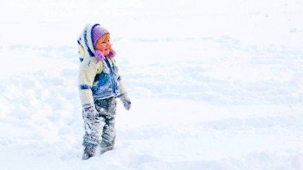 Метеорологи рассказали, ждать ли ноябрьского снега в Воронежской области