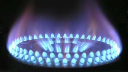 Воронежские супруги отравились угарным газом