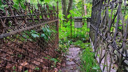 Переполненное Коминтерновское кладбище Воронежа станет объектом культурного наследия