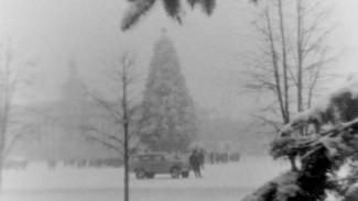 Живые ёлки и катания с горки. Как воронежцы отмечали Новый год в советское время