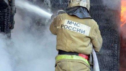 Два человека в Воронежской области погибли из-за непотушенных сигарет