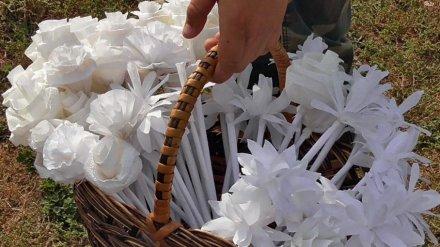 Акция «Белый цветок 2018» побила в Воронежской области собственный рекорд