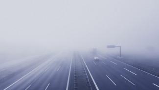 Жителей Воронежской области предупредили о сильном тумане на М-4 «Дон»