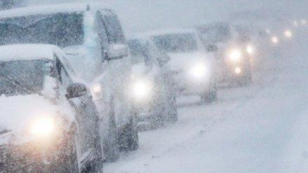 ГИБДД предупредила воронежских водителей о гололедице на дорогах