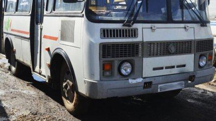 В Воронеже отстранили от работы маршрутчика, едва не сбившего ребёнка на переходе
