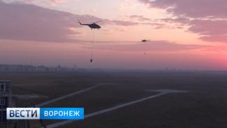 На полигоне под Воронежем окончательно ликвидировали крупный пожар