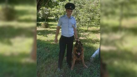 В Воронежской области пёс вышел на след избившего пенсионеров грабителя