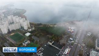 Власти увеличили площадь «зелёного пояса» вокруг Воронежа