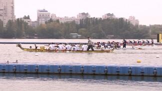 На обновлённой дамбе Чернавского моста в Воронеже прошёл чемпионат по гребле на лодках «Дракон»