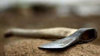 В Воронежской области мужчина убил приятеля топором и закопал тело