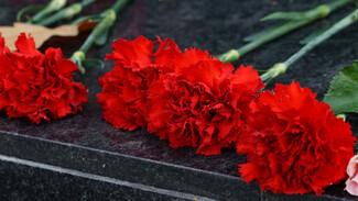 В Воронеже братскую могилу на Шишкова признали объектом культурного наследия