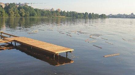 Воронежская полиция проверит видео с разломавшим пирс в парке «Дельфин» вандалом