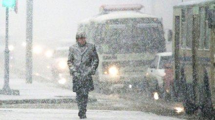 МЧС предупредило воронежцев о снежной буре