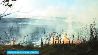 В Петропавловском районе сгорело более 100 гектаров травы и сухостоя
