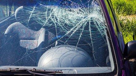 Двое жителей Тамбова пострадали в ДТП на воронежской дороге