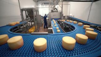 В Воронежской области запустят производство выдержанных сыров