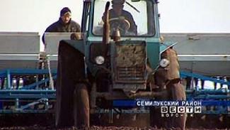 В некоторых районах Воронежской области начался сев яровых