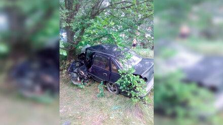 В Воронежской области в ДТП погиб уснувший за рулём водитель
