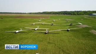 В Воронежской области воспитанников районной школы бесплатно учат летать на планерах